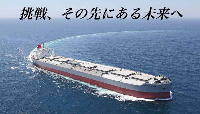 株式会社 名村造船所